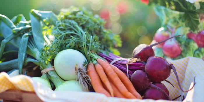 Les Bienfaits Des Aliments Biologiques Pour La Santé